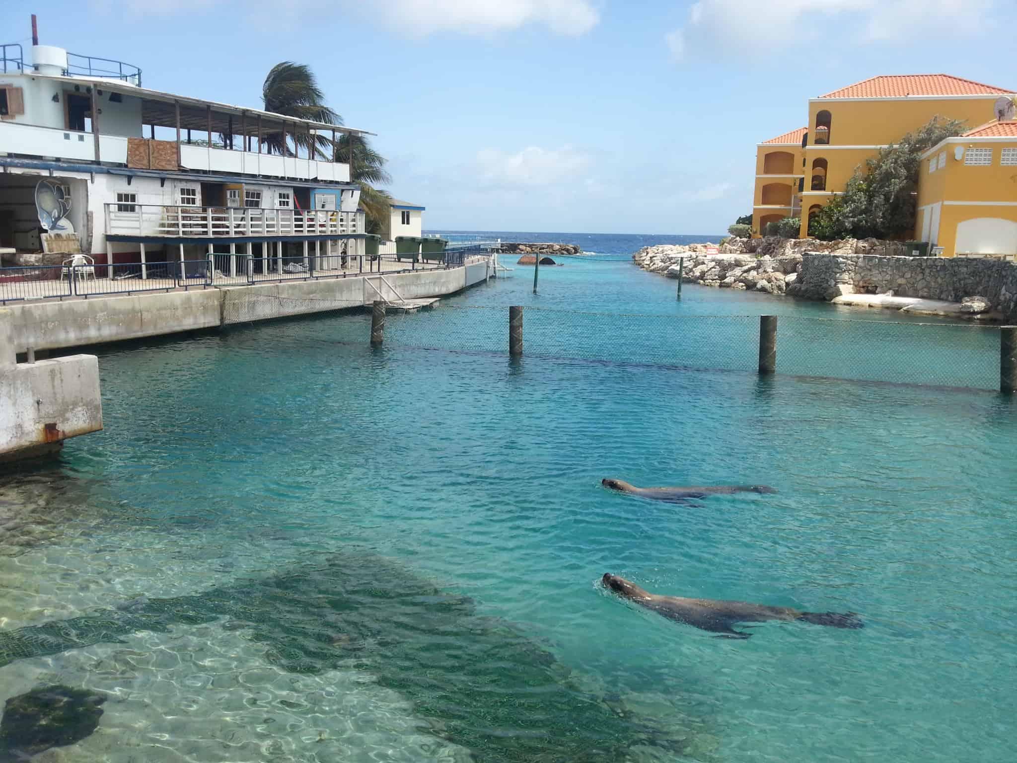 Confira dicas de como aproveitar o melhor de Curaçao, no Caribe