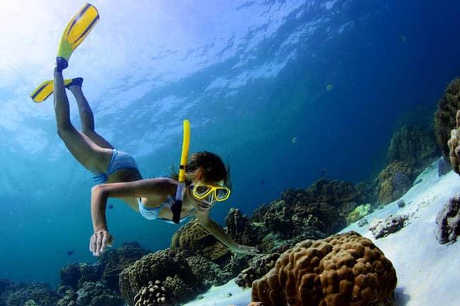Resultado de imagem para mergulho em snorkel