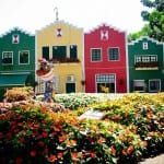 Que tal passar um dia no Parque de Lavanda em Gramado?