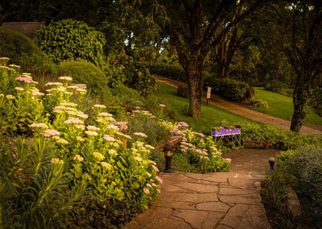 Le Jardin10