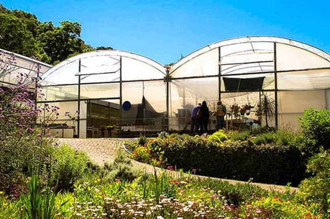 Le Jardin2