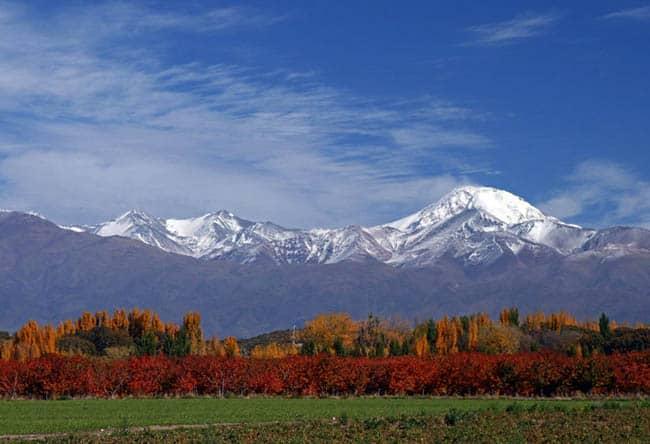 Mendoza6