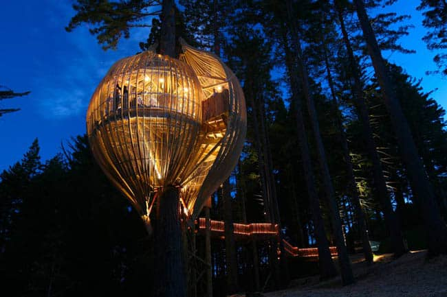 redwoods-treehouse10