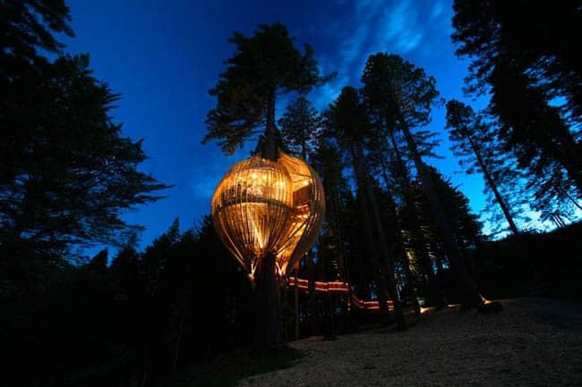 redwoods-treehouse4