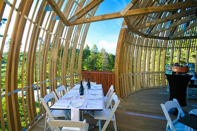 redwoods-treehouse5