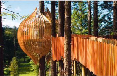 Conheça o inusitado restaurante acima de uma árvore em Auckland
