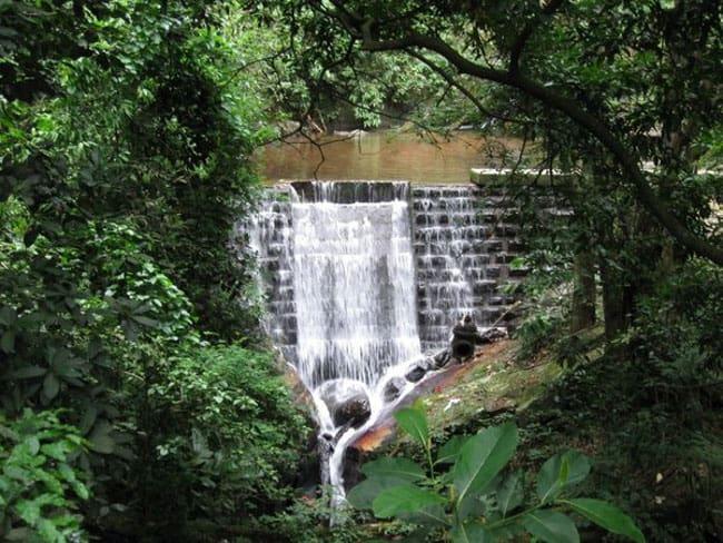 Precisa se refrescar? Então vá para a Cachoeira do Horto, no Rio de Janeiro