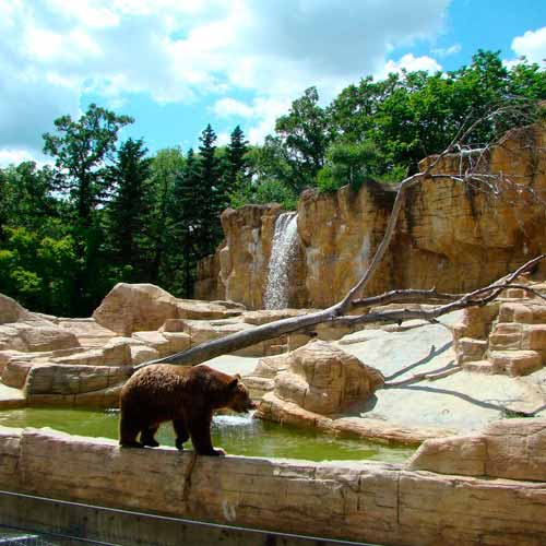 Assiniboine Park / Zoo
